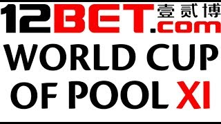 World Cup of Pool 2017