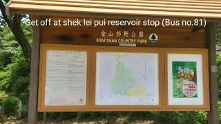 Exploring kowloon reservoirs & Lion rock country park