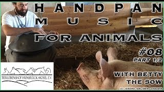 🐷🎶❤️ - HMFA N.08 part 1/2 - BETTY THE SOW CHILLING OUT TO HANDPAN MUSIC IN THE ANIMAL SHELTER
