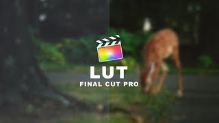 FCP - LUTS #1 What Is A LUT?
