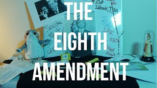 The 8th Amendment | The Unemployed Historian