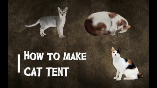How to make cat tent: by Bee for LNG-106, Section-1, April 2016