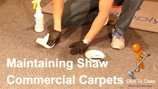 Maintaining Shaw Commercial Carpets