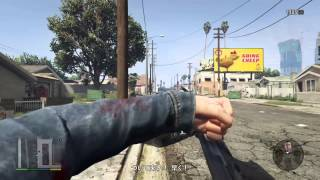 Grand Theft Auto V in FPS